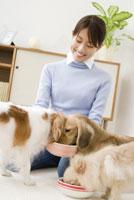餌を食べる犬と女性 28204000134| 写真素材・ストックフォト・画像・イラスト素材|アマナイメージズ