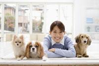 女性と3匹の犬 28204000138| 写真素材・ストックフォト・画像・イラスト素材|アマナイメージズ