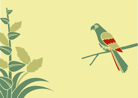 Vector Illustration of a parrot on a branch on a green background 60016009222| 写真素材・ストックフォト・画像・イラスト素材|アマナイメージズ