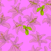 Seamless  background with flower lily. Could be used as seamless wallpaper, textile, wrapping paper or background 60016011106| 写真素材・ストックフォト・画像・イラスト素材|アマナイメージズ