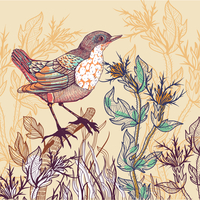 vector floral illustration of a little bird and wild herbs 60016018010| 写真素材・ストックフォト・画像・イラスト素材|アマナイメージズ