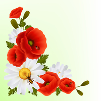 Vibrant floral poppy flowers and daisies background with lady birds and bee vector illustration 60016028707| 写真素材・ストックフォト・画像・イラスト素材|アマナイメージズ