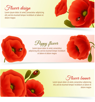 Vibrant floral horizontal banners of poppy flowers and blossoms with lady birds isolated vector illustration 60016028708| 写真素材・ストックフォト・画像・イラスト素材|アマナイメージズ