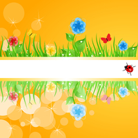 Summer frame. Green grass with flowers. A vector illustration 60016029573| 写真素材・ストックフォト・画像・イラスト素材|アマナイメージズ