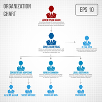 Organizational chart infographic business hierarchy boss to employee structure vector illustration 60016029759| 写真素材・ストックフォト・画像・イラスト素材|アマナイメージズ