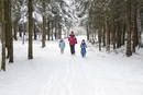 Austria, Mother running with her childrens in forest