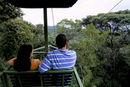 Aerial tramway on forest canopy, Soberania Forest National Park, Gamboa, Panama, Central America