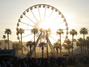 A Ferris wheel with palm trees in front of it. The sun is setting. A festival is taking place.
