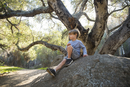 4 year old blonde boy sitting on large rock in forest with California oak tree in the background.