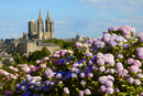Panorama with pink and blue hydrangeas in the foreground and Notre Dame cathedral on the skyline of the town of Coutances, Coten