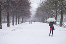 Germany, Bavaria, Munich, Hofgarten Park, early snow