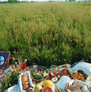 Summer picnic in a meadow