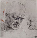 Study of male heads for the Battle of Anghiari,drawing by L