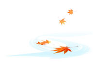 水面に散って流れる紅葉 00380010365| 写真素材・ストックフォト・画像・イラスト素材|アマナイメージズ