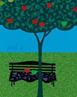 ベンチと樹のイメージ 00684010205| 写真素材・ストックフォト・画像・イラスト素材|アマナイメージズ