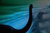 恐竜と海岸 合成 01222000019| 写真素材・ストックフォト・画像・イラスト素材|アマナイメージズ
