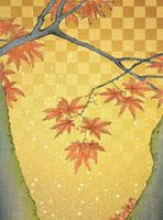 浮世絵のもみじと金和紙 CG 02022347206| 写真素材・ストックフォト・画像・イラスト素材|アマナイメージズ