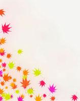 カラフルな紅葉 02022347738| 写真素材・ストックフォト・画像・イラスト素材|アマナイメージズ