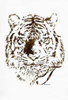 セピア色の虎のポートレート 02342000027| 写真素材・ストックフォト・画像・イラスト素材|アマナイメージズ