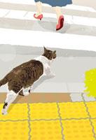 横断歩道の猫 02425000011| 写真素材・ストックフォト・画像・イラスト素材|アマナイメージズ