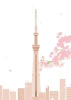 桜と花びらが舞う向こうにスカイツリー 02526000067  写真素材・ストックフォト・画像・イラスト素材 アマナイメージズ
