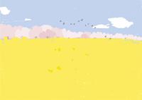桜と菜の花畑 02526000250  写真素材・ストックフォト・画像・イラスト素材 アマナイメージズ