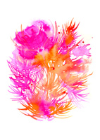 flower 02620000018| 写真素材・ストックフォト・画像・イラスト素材|アマナイメージズ