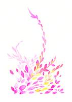 flower 02620000020| 写真素材・ストックフォト・画像・イラスト素材|アマナイメージズ