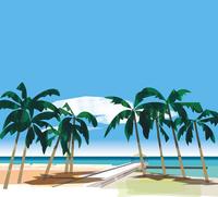 椰子の木のある人が誰もいないビーチ 02837000171| 写真素材・ストックフォト・画像・イラスト素材|アマナイメージズ