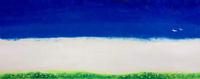 青空に飛ぶ2羽の白いトリ 02837000304| 写真素材・ストックフォト・画像・イラスト素材|アマナイメージズ