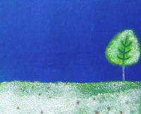 白い小さな花の中に立つ1本の木 02837000305| 写真素材・ストックフォト・画像・イラスト素材|アマナイメージズ