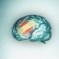 Brain with a Bandaid on it
