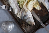 Still Life of Baked Trout with Lemon and Fennel 20025301442| 写真素材・ストックフォト・画像・イラスト素材|アマナイメージズ