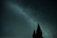 Milky Way and Silhouetted Spruce Trees, St Sauveur, Les Pays-d'En-Haut, Quebec, Canada 20025313130| 写真素材・ストックフォト・画像・イラスト素材|アマナイメージズ
