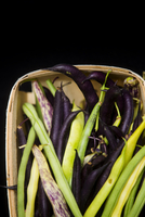 Close-up of variety of fresh picked peas in basket on black background, Jeffersonville, Georgia, USA 20025315265| 写真素材・ストックフォト・画像・イラスト素材|アマナイメージズ