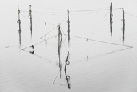 View of poles and ropes of fishing nets in silent lake 20025320664| 写真素材・ストックフォト・画像・イラスト素材|アマナイメージズ