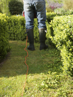 Back view of a gardener pruning a hedge with electrical trimmer, headless 20025325418| 写真素材・ストックフォト・画像・イラスト素材|アマナイメージズ
