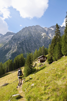 Italy, South Tyrol, Puster Valley, Antholz-Obertal, Staller Saddle, Woman hiking at Steinzgeralm 20025330303| 写真素材・ストックフォト・画像・イラスト素材|アマナイメージズ