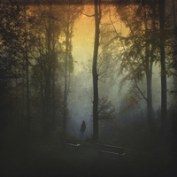 Germany, near Wuppertal, man standing at benches in forest at sunset 20025331299| 写真素材・ストックフォト・画像・イラスト素材|アマナイメージズ