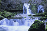 Waterfall, Source de la Loue, Doubs, Franche-Comte, France, Europe 20025349787| 写真素材・ストックフォト・画像・イラスト素材|アマナイメージズ