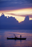 Fishing boat in the Indian Ocean at dawn, island of Zanzibar, Tanzania, East Africa, Africa 20025350713| 写真素材・ストックフォト・画像・イラスト素材|アマナイメージズ