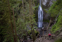 Marymere Falls, Olympic National Park, UNESCO World Heritage Site, Washington, United States of America, North America 20025351158| 写真素材・ストックフォト・画像・イラスト素材|アマナイメージズ