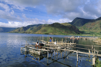 Fish rearing cages on northern tip of Lake Toba, the largest lake in SE Asia, Tongging, Lake Toba, Sumatra, Indonesia 20025352117| 写真素材・ストックフォト・画像・イラスト素材|アマナイメージズ