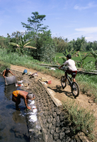 Ladies washing in canal near Candi Suimberawan, island of Java, Indonesia, Southeast Asia, Asia 20025354209| 写真素材・ストックフォト・画像・イラスト素材|アマナイメージズ