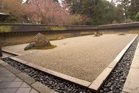 Ryoanji temple, dry stone garden and blossom, UNESCO World Heritage Site, Kyoto city, Honshu island, Japan, Asia 20025358581| 写真素材・ストックフォト・画像・イラスト素材|アマナイメージズ