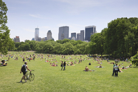 Sheep Meadow, Central Park on a Summer day, New York City, New York, United States of America, North America 20025360852| 写真素材・ストックフォト・画像・イラスト素材|アマナイメージズ