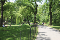 Central Park, Manhattan, New York City, New York, United States of America, North America 20025360854| 写真素材・ストックフォト・画像・イラスト素材|アマナイメージズ