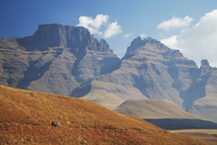 People hiking in Monk's Cowl Nature Reserve with Champagne Castle in background, Ukhahlamba-Drakensberg Park, UNESCO World Herit 20025364572| 写真素材・ストックフォト・画像・イラスト素材|アマナイメージズ