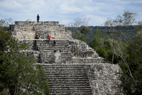 Pyramid I, Calakmul, UNESCO World Heritage Site, Calakmul Biosphere Reserve, the largest tropical forest reserve in Mexico, Camp 20025364651| 写真素材・ストックフォト・画像・イラスト素材|アマナイメージズ