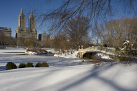 The Bow Bridge and fresh snow in Central Park after a blizzard, New York City, New York State, United States of America, North A 20025365063| 写真素材・ストックフォト・画像・イラスト素材|アマナイメージズ